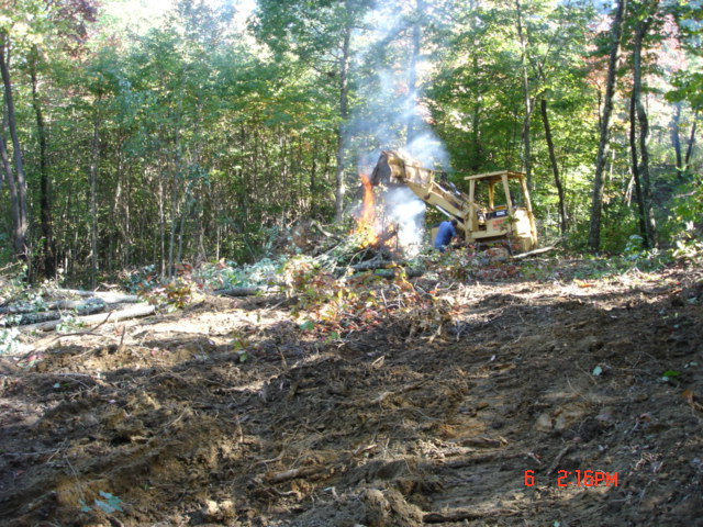 Removing the forest.