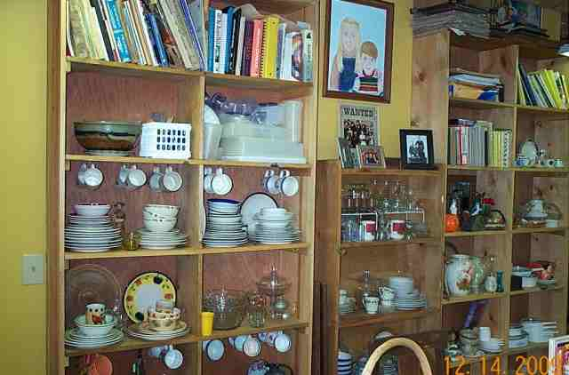 On the east wall Norman built me three large sets of shelves. One is closed in to keep my best dishes clean.
